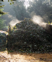 The world-changing potential of hot composting
