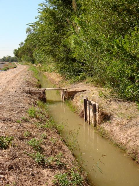 An acequia irrigation ditch just outside Albuquerque, New Mexico. (Photo by Jay Walljasper)