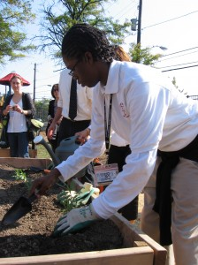 Students plant sage in Thurgood Marshall Academy and Savoy Elementary's garden, built this summer as a place to study environmental science and grow vegetables for the school and local markets. (Photo credit: Dan Kane)