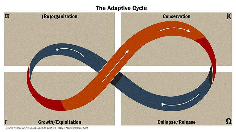 about-resilience-adaptive-cycle