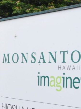 Monsanto Hawaii