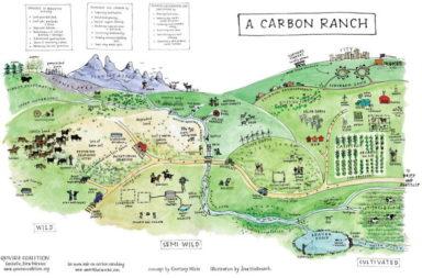 Carbon Ranch